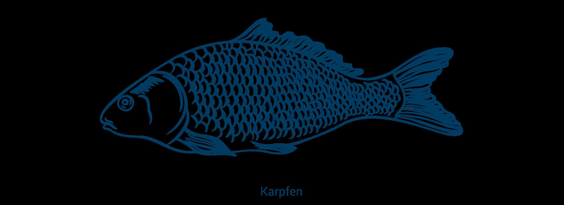 slider_karpfen